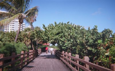 SAY GOODBYE TO MIAMI BEACH'S WOODEN BOARDWALK: DEMOLITION WILL START TOMORROW, TO BE REPLACED WITH BEACHWALK